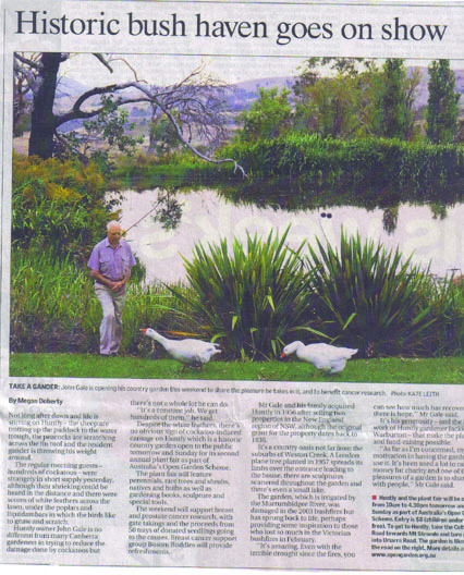 Bush Haven Article Jackie Warburton